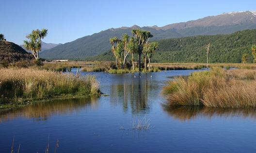 The Rakatu Wetlands reserve.